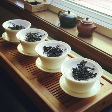 Tee-Verkostung in den USA