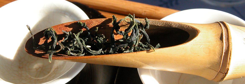 Tschanara Teagarden