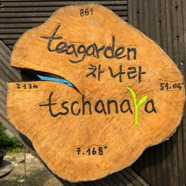 Deutschlands erster Teegarten – ein Bericht